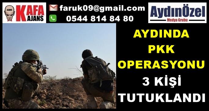 AYDINDA PKK OPERASYONU 3 TUTUKLAMA