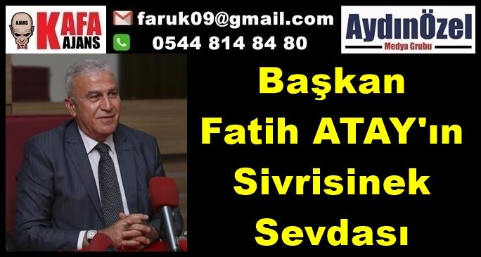Fatih ATAY'ın Sivrisinek Sevdası
