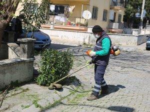 Efeler'de Yabani Ot ve Çim Biçme Çalışmaları Devam Ediyor