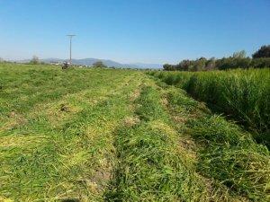 Toprak İşleme ve Ekim Hazırlıklarına Başladı