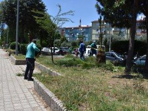 Nazilli Belediyesi'nden 4 ayrı noktada eş zamanlı çalışma