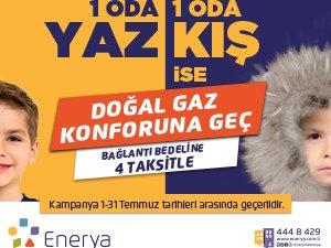 enerya300250