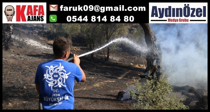 Büyükşehir Belediyesi İmamköy'deki Yangın İçin Teyakkuza Geçti