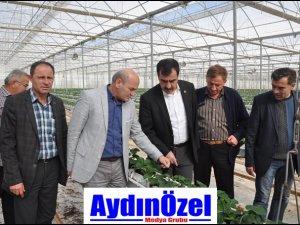 Aydın Büyükşehir Belediyesi Destek Olmadı!