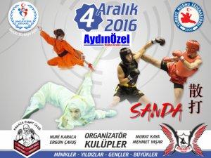 Aydın'da Whusu-Kung Fu Festivali