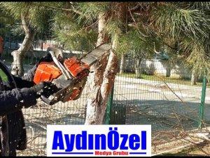TAM DESTEK EFELER BELEDİYESİ'NDEN