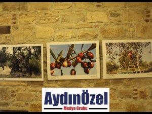 İBRAMAKİ SANAT GALERİSİ'NDE ZEYTİN KONULU FOTOĞRAF SERGİSİ