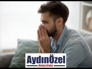 POLENLER DE SİNÜZİTİ TETİKLİYOR