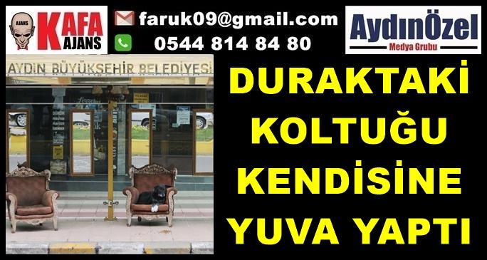 duraktaki-can-dost-(1).jpg